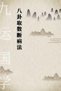 张成达-八卦取数断病法-电子书下载插图