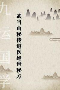 武当山秘传 道医绝世秘方,随便一项就够吃一辈子,原价18800-电子书下载插图
