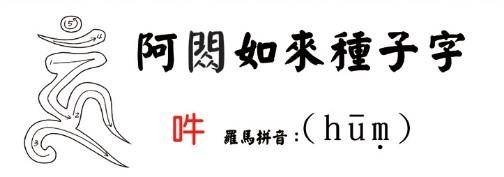学习佛菩萨梵文种子字(附书写笔画顺序)插图2