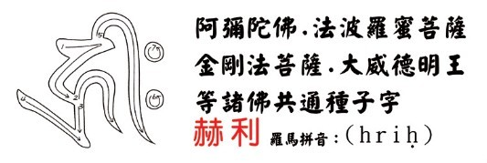 学习佛菩萨梵文种子字(附书写笔画顺序)插图14