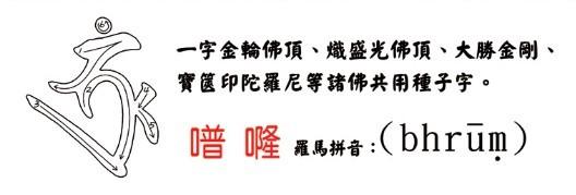 学习佛菩萨梵文种子字(附书写笔画顺序)插图13